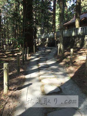 赤城神社(三夜沢町)34