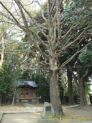 二荒山神社24
