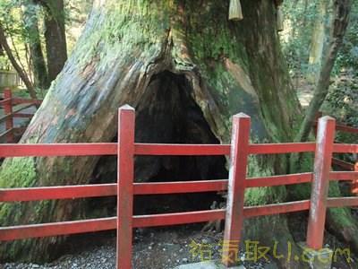 箱根神社56