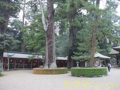 香取神宮013