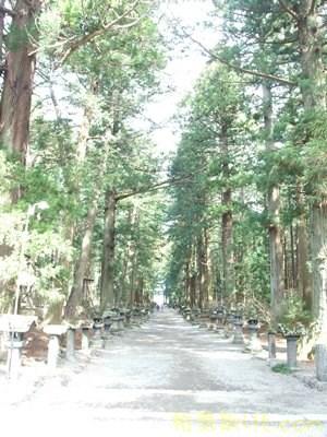 北口本宮浅間神社117
