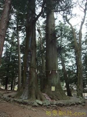 河口浅間神社13