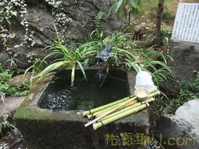 武田神社50
