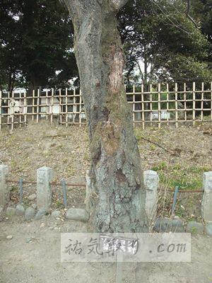 正一位稲荷神社10