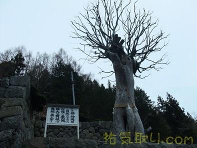 夫婦木神社5