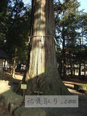 河口浅間神社34