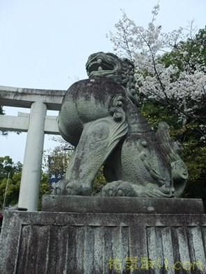 武田神社20