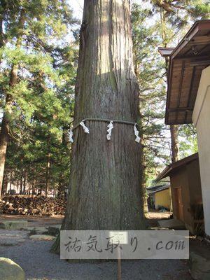 河口浅間神社30