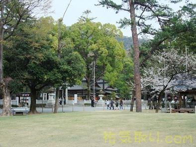 武田神社49