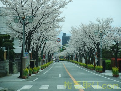 武田神社58