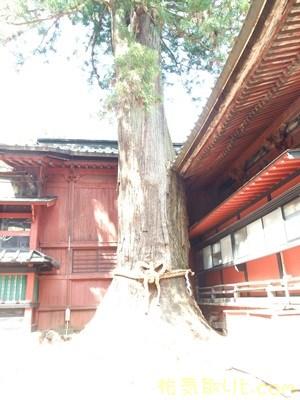 北口本宮浅間神社50