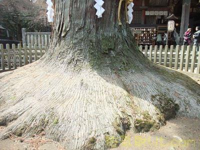 北口本宮浅間神社30