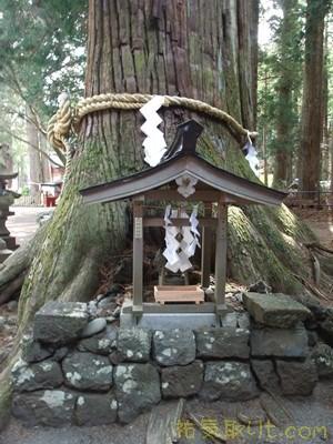 北口本宮浅間神社105