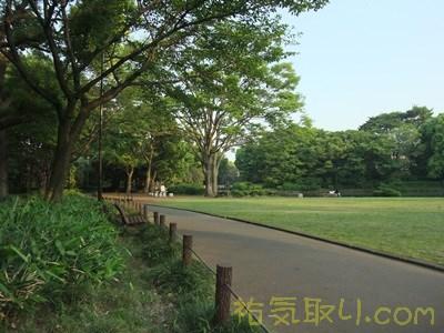 北の丸公園5