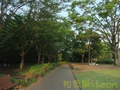 北の丸公園7