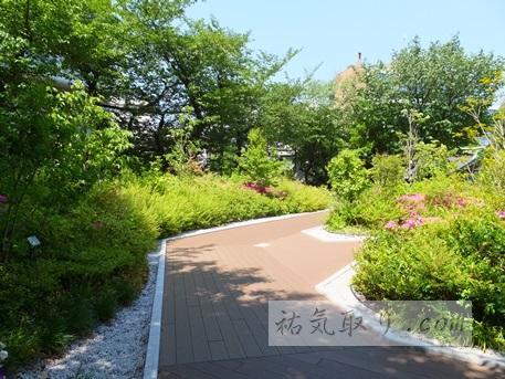 【東京】神田神社 その3 屋上庭園(千代田区)