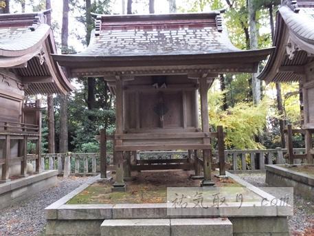 弥彦神社21