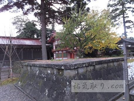 天津神社57