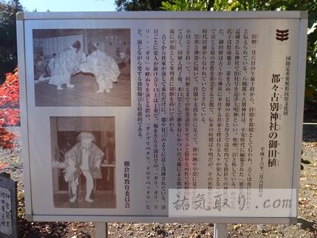 八槻都々古別神社13