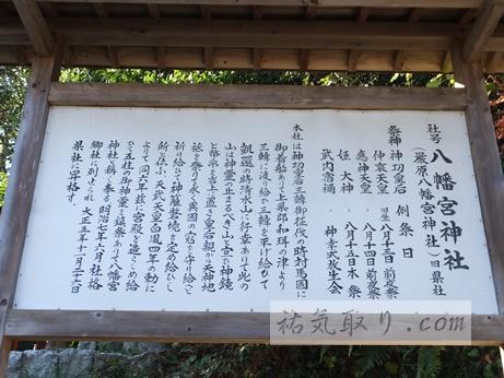 対馬八幡神社11