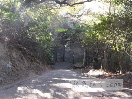 対馬海神神社19