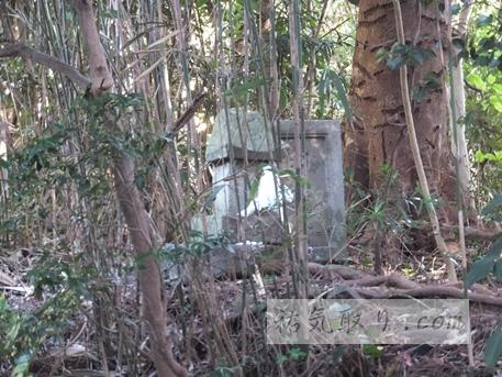 興神社12