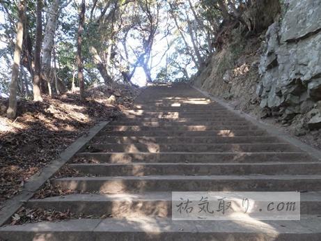 対馬海神神社18