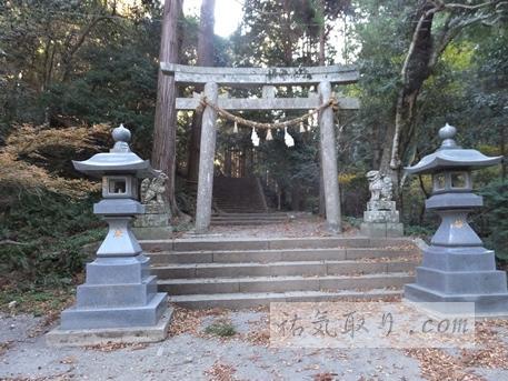 対馬海神神社15